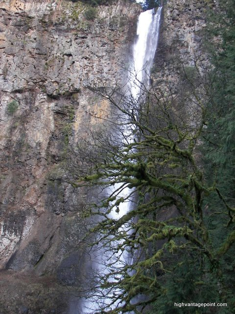 Multnomah Falls from a high vantage point